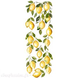 Transfert pelliculable Iron Orchid Designs IOD Lemon Drop 30x84cm