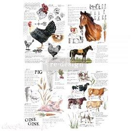 Transfert pelliculable Redesign by Prima Farm Life
