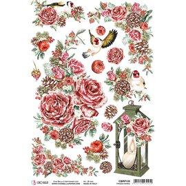 Papier de riz Ciao Bella 22x32cm Frozen Roses