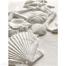 Moule décoratif IOD Iron Orchid Designs en silicone Sea Shells