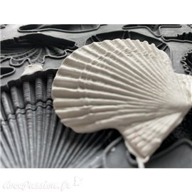 Moule décoratif IOD Iron Orchid Designs en silicone Sea Shells