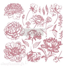 Tampons Redesign Clear Stamps LINEAR FLORAL