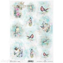 Papier de riz les oiseaux A4