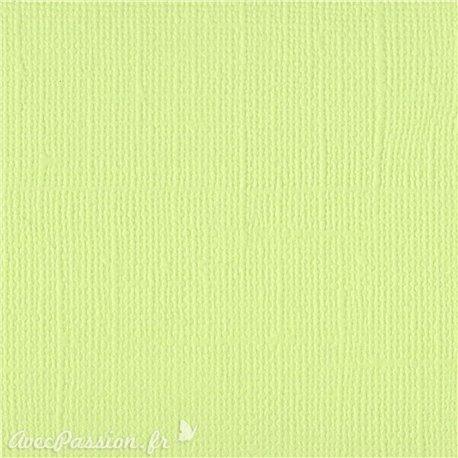 Papier scrapbooking Bazzill Canvas 30x30cm 1fe uni Limeade