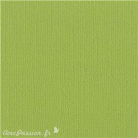 Papier scrapbooking Bazzill Canvas 30x30cm 1fe uni Parakeet