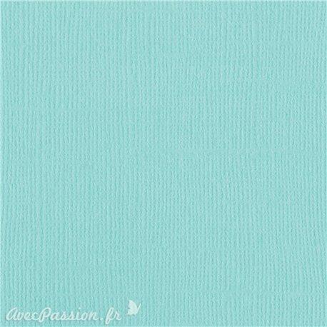 Papier scrapbooking Bazzill Canvas 30x30cm 1fe uni Aruba