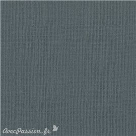 Papier scrapbooking Bazzill Canvas 30x30cm 1fe uni Thunder