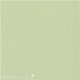 Papier scrapbooking Bazzill Canvas 30x30cm 1fe uni Aloe Vera