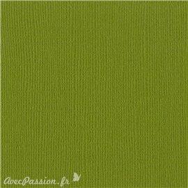 Papier scrapbooking Bazzill Canvas 30x30cm 1fe uni Hillary