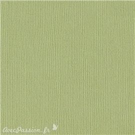 Papier scrapbooking Bazzill Canvas 30x30cm 1fe uni Pear