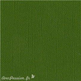 Papier scrapbooking Bazzill Canvas 30x30cm 1fe uni Ivy