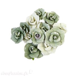 Fleurs Prima diamond collection courage 12pcs 3cm