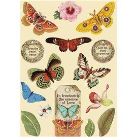Chipboard bois silhouettes entaillées Amazonia papillon