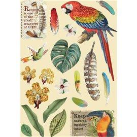 Chipboard bois silhouettes entaillées Amazonia perroquet