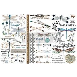 Transfert pelliculable Redesign Spring Dragonfly 15x30cm