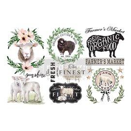 Transfert pelliculable Redesign Sweet Lambs 15x30cm