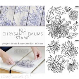 Tampons IOD Clear Stamps Chrysanthemums