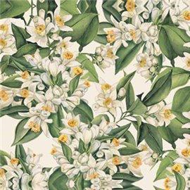 Papier tassotti à motifs fleurs d'oranger