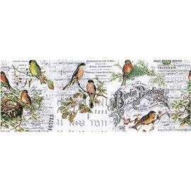 Papier pour collage Tim Holtz rouleau 15cmx5.49m Aviary idea-ology
