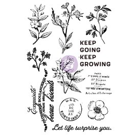 Tampon transparent Clear Stamps Nature Lover 11 pièces
