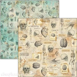 Feuille scrapbooking Ciao Bella Human Anatomy 30x30 double face