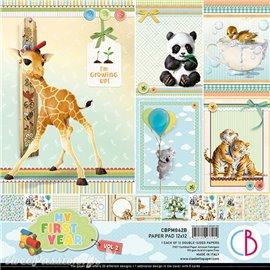 Papier scrapbooking Ciao Bella My First Year Vol.2 12fe 30x30 assortiment