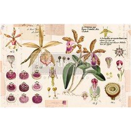 Papier de Murier Mulberry Decoupage Decor Tissue Paper Purple Beauty Redesign 48x76cm