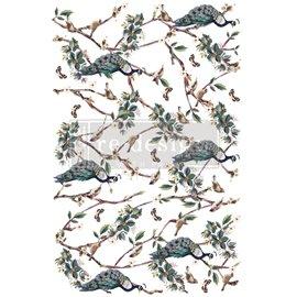 Transfert pelliculable Redesign Avian Sanctuary 61x89cm