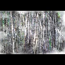 Transfert pelliculable Hokus Pokus Woodlands Decor-Weave