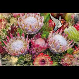 Transfert pelliculable Hokus Pokus Fynbos Decor Weave