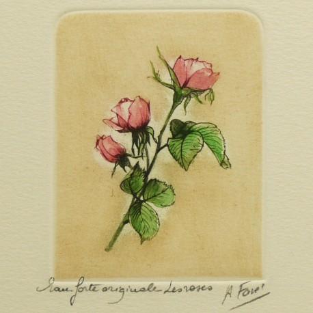 Gravure eau forte fleurs Les roses