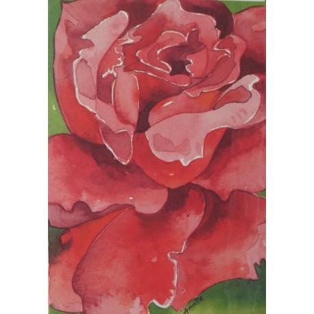 Carte postale fleurs roses rouges