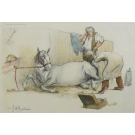 Gravure cheval signée Hoffmann