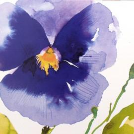 Carte postale fleurs pensée Summer Thornton