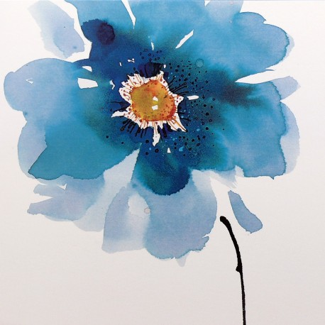 Carte postale fleurs Summer Thornton Himalaya Poppy