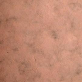 Papier népalais lokta lamaLi sienne