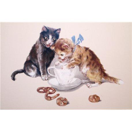 Carte postale Ludom chat le gouter