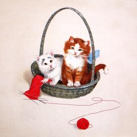 Carte postale Ludom les petits chats dans leur corbeille