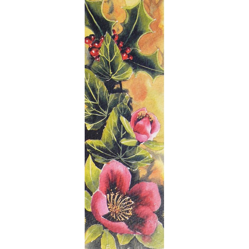 cartes postales fleurs encadrement rose noel achat vente. Black Bedroom Furniture Sets. Home Design Ideas