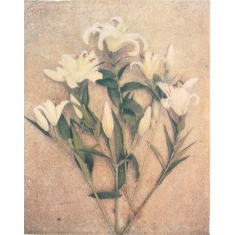 Carte d'art fleurs lis blanc 20x25