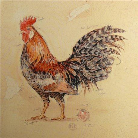 Carte d'art poule espresso plumage détail Chad Barrett