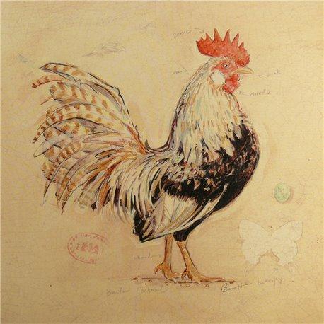 Carte d'art poule golden plumage détail Chad Barrett