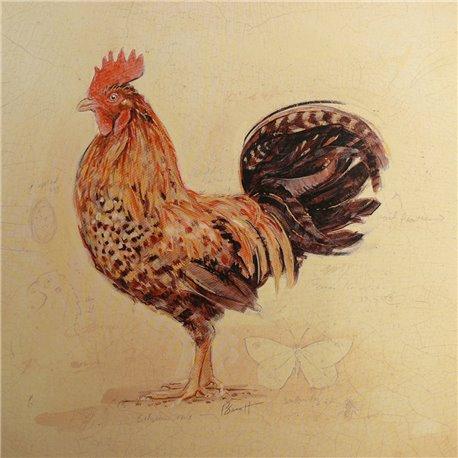 Carte d'art poule chocolat plumage détail Chad Barrett