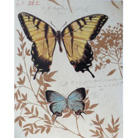 Carte d'art papillon laurel curiosity faxcuriosity