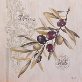 Carte d'art rameau d'olives Stephania Ferri