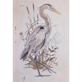 Carte d'art great blue heron detail