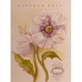 Carte d'art fleur de pavot