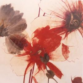 Carte d'art fleurs transparent beauty Matina Theodosiou