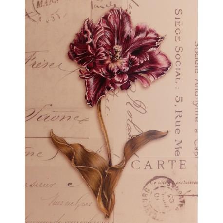 Carte d'art fleurs tulipe perroquet bordeaux