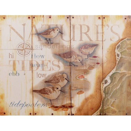 Carte d'art oiseau nature's tidepoolers